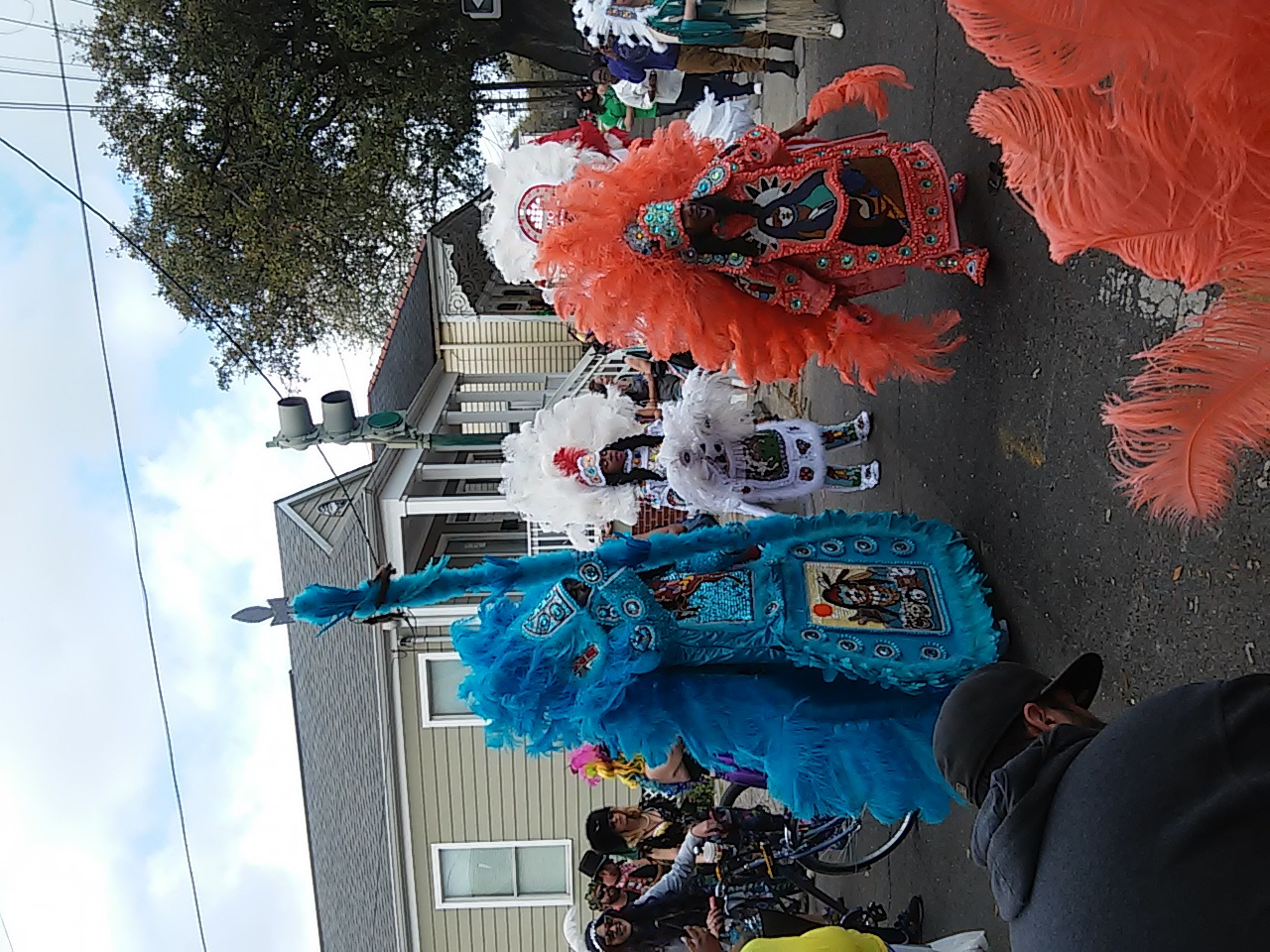 Carnival New Orleans News 2017 March